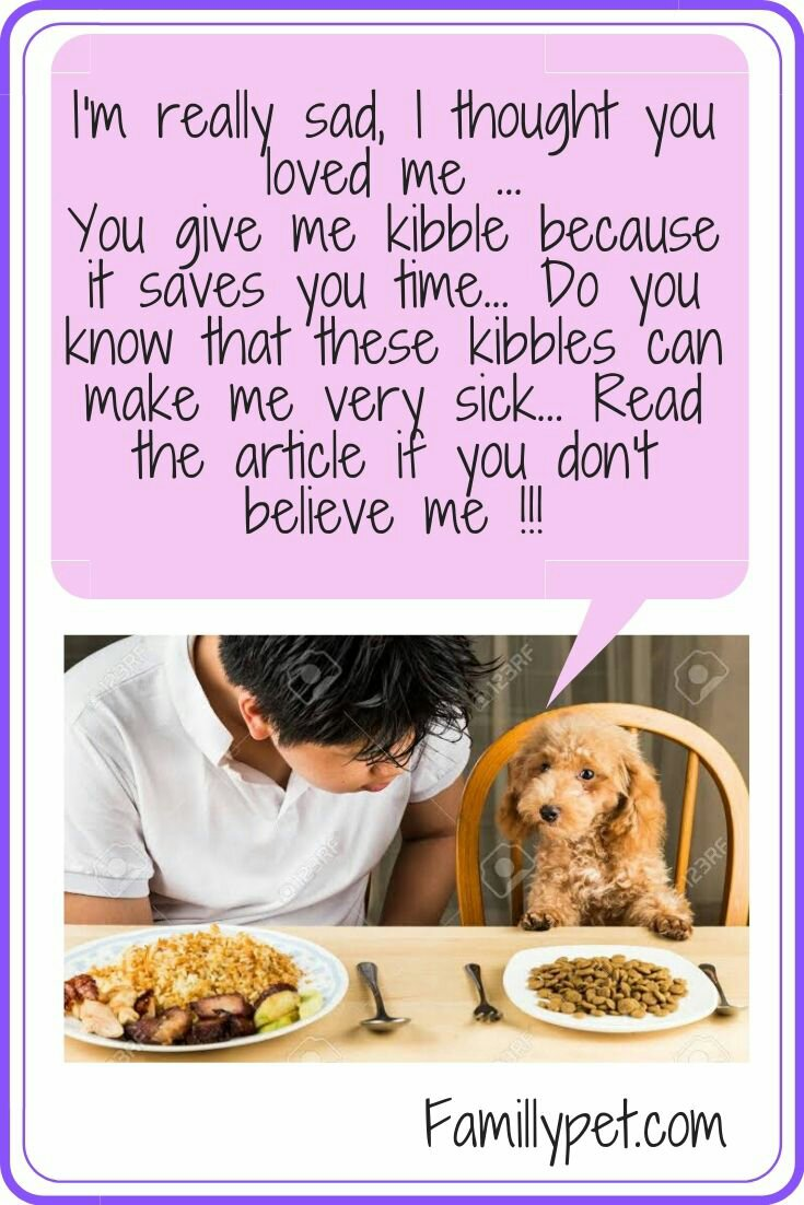 Why kibble is bad food for puppies?