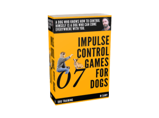 M Samy book about brain games for dogs