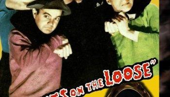 Ghosts on the Loose starring Leo Gorcey, Huntz Hall, Bela Lugosi, Ava Gardner