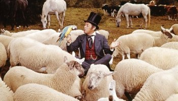 Song Lyrics to Like Animals, Written by Leslie Bricusse, Performed by Rex Harrison