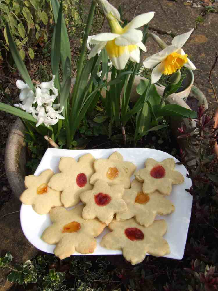 Spring flower thumbprint cookies with daffs
