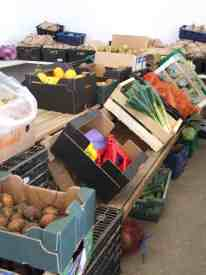 Cofco packing station - boxes of fruits and vegetables ready for packing