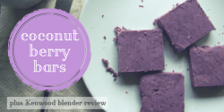 coconut berry bars