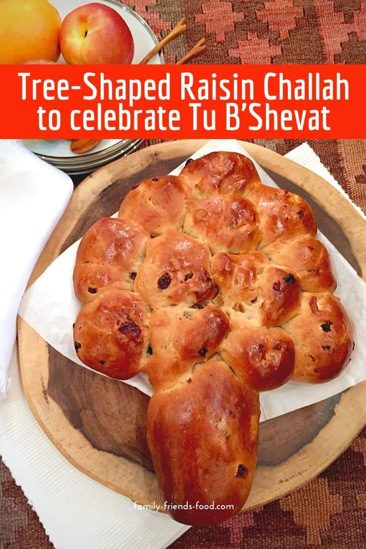 Fluffy, soft, delicious raisin challah, studded with extra dried fruits - apricot, apple, cherry and more! Make tree shaped for Tu B'Shevat or enjoy a simple loaf anytime.