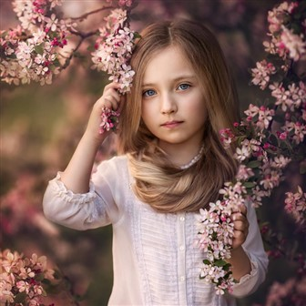 child custody and the gifted child