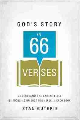 God's Story In 66 Verses (NETT)