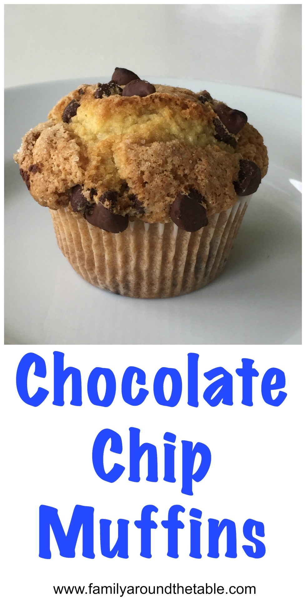 Chocolate chip muffins are a great grab and go breakfast or snack.