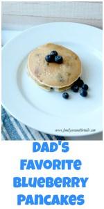 Blueberrypancakespin