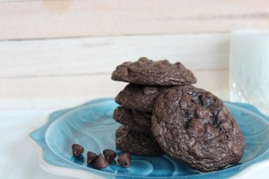 Chocolaty Chocolate Chip Cookies
