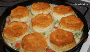 Turkey Biscuit Stew – Taste of Home's 100 Family Meals Cookbook