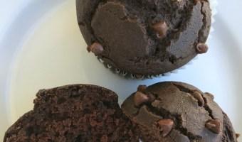 Chocolate Chip Chocolate Muffins