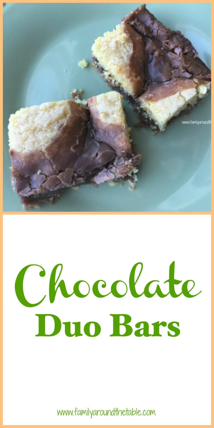 Chocolate Duo Bars start with a cake mix and make a great after school treat.