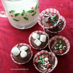 Hazelnut hot chocolate drops make rich, creamy and delicious hot chocolate.