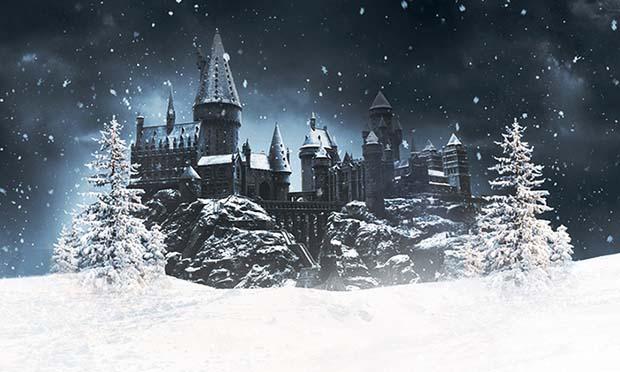 christmas-harry-potter-studio-tour-photo2
