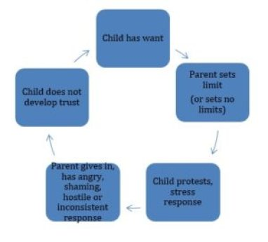 disrupted attachment cycle