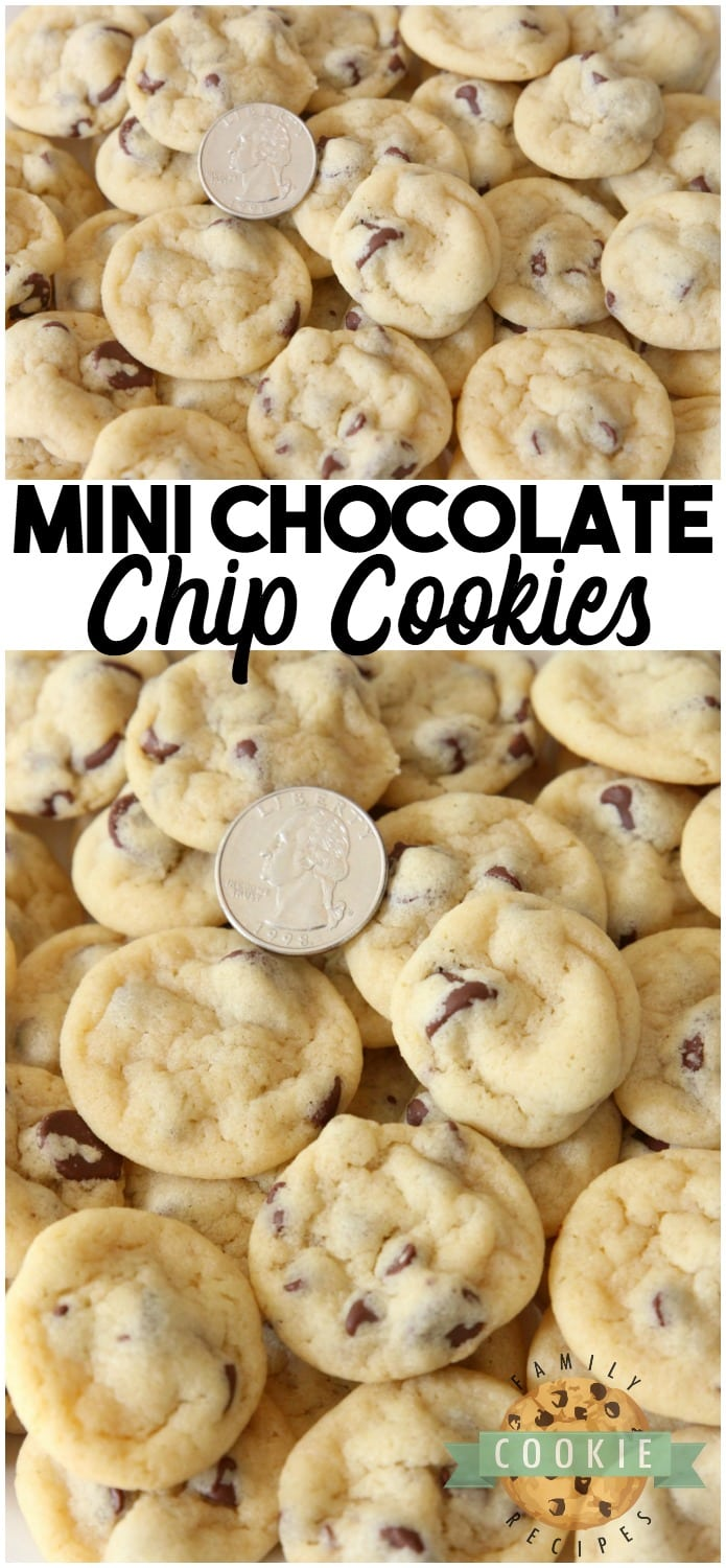 Mini Chocolate Chip Cookies are teeny tiny chocolate chip cookies about the size of a quarter! Soft, chewy poppable cookies that are perfect for parties. #cookies #mini #cookies #chocolatechip #party #recipe #dessert