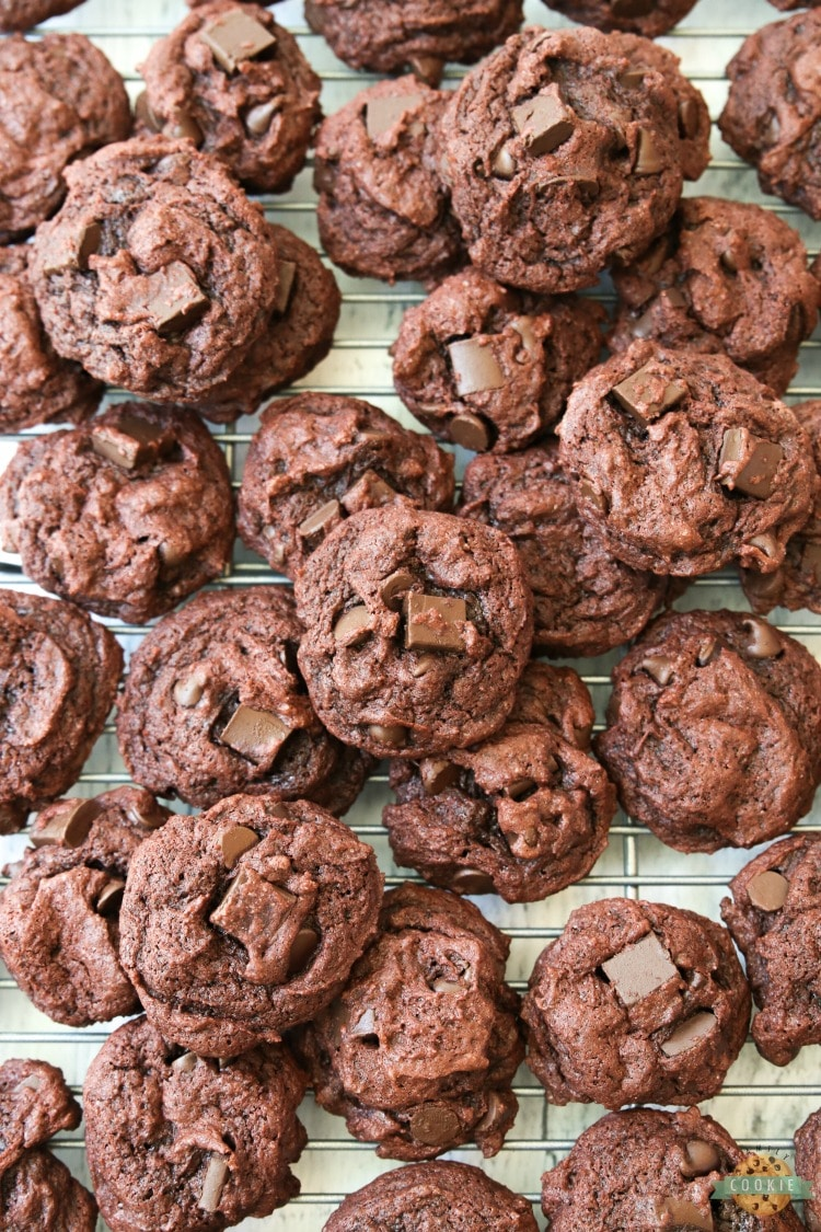 DOUBLE CHOCOLATE CHIP PUDDING COOKIES - Double Chocolate Pudding Cookies made with chocolate pudding mix for soft, sweet cookies with incredible chocolate flavor! Best cookies for chocolate lovers for sure. #cookies #chocolate #baking #dessert #chocolatechips #pudding #recipe from FAMILY COOKIE RECIPES