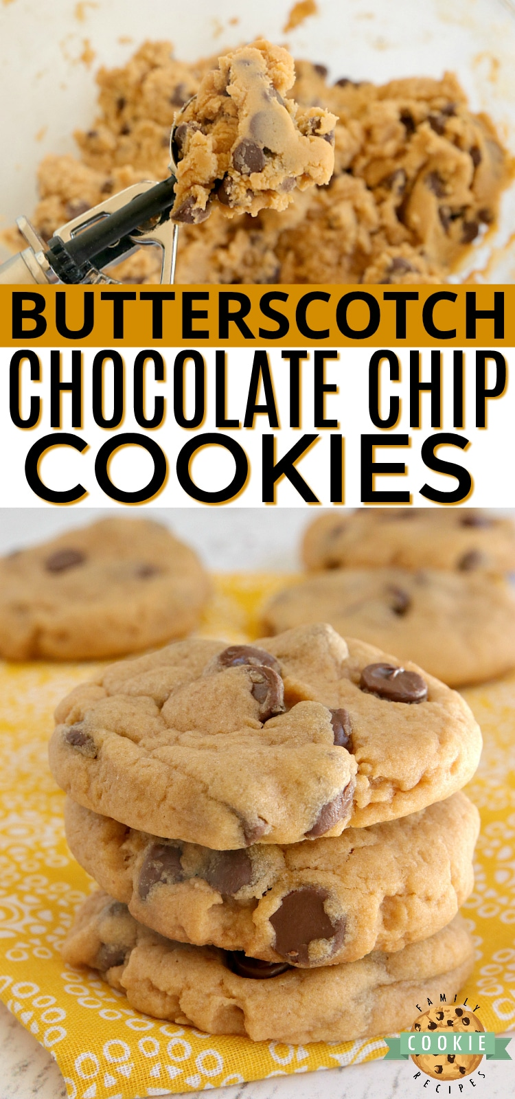 Butterscotch Chocolate Chip Cookies made with butterscotch pudding mix and milk chocolate chips. Amazingly soft and chewy cookies bursting with butterscotch flavor. via @familycookierecipes