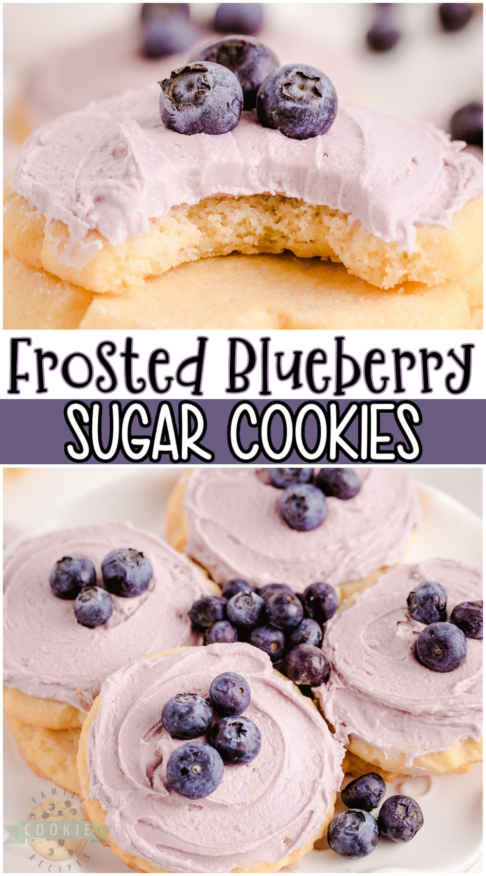 Blueberry sugar cookies made with a soft, vanilla cookie dough & an absolutely delightful blueberry buttercream frosting on top! Frosted sugar cookie with blueberries perfect for any occasion! #cookies #blueberry #sugarcookies #baking #easyrecipe from FAMILY COOKIE RECIPES via @buttergirls