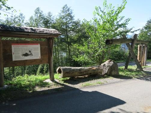 Heidi Land - Experience Station
