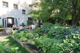 Buchholz // Fresh food from their own garden in a designer enviroment