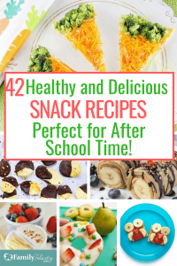 These fun and healthy snack ideas are perfect for a heathy after school snack! Your kids won't know which one to try first! #school #backtoschool #cooking #meals #lunch #parenting