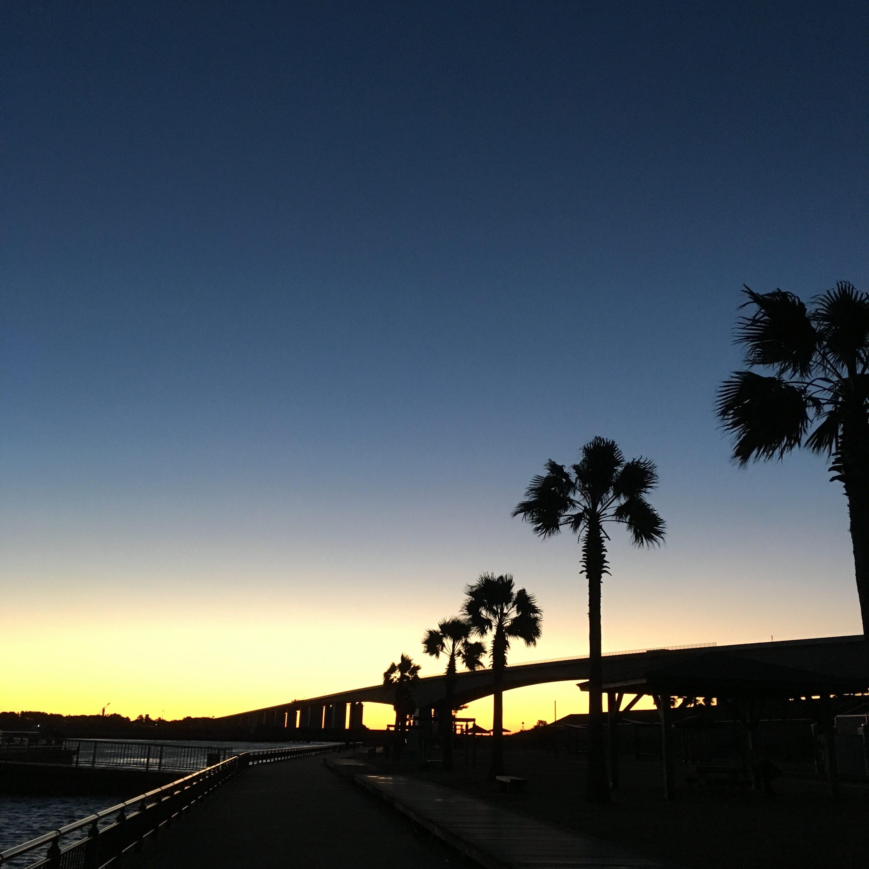 新居弁天海釣公園の夜明け