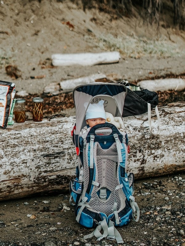 Baby in carrier mountains