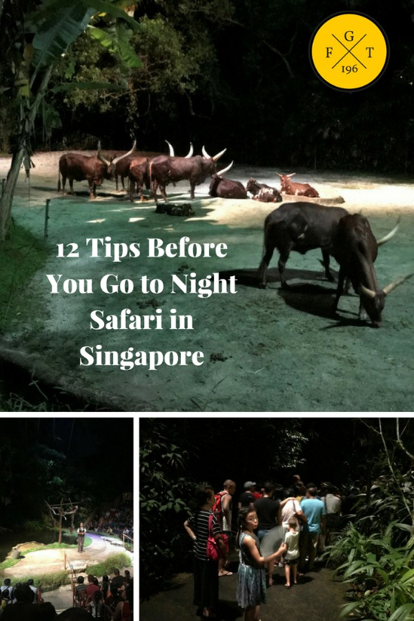 12 Tips Before You Go to Night Safari in Singapore