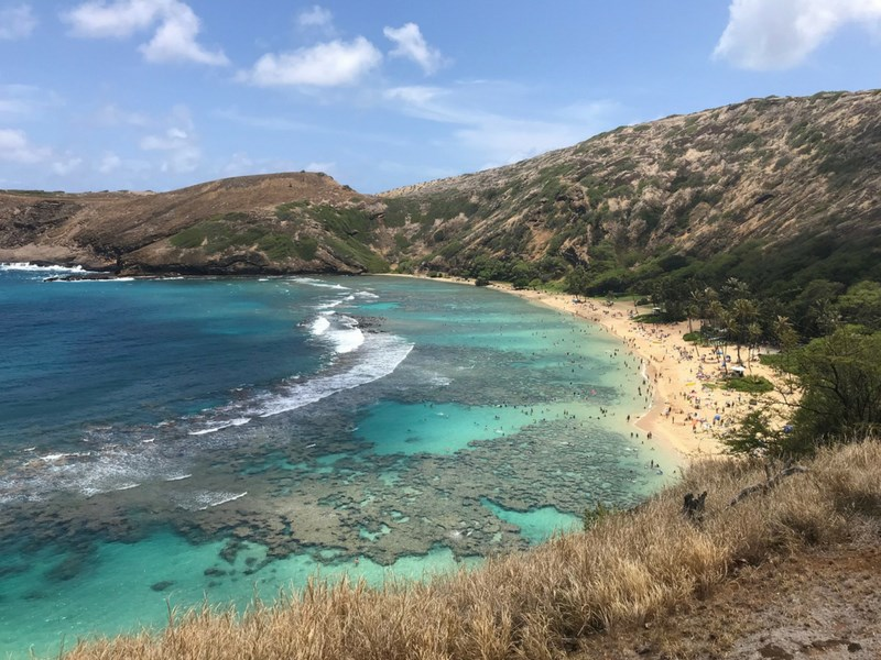 Things to Do in Oahu With Kids Hanuama Bay Snorkelling
