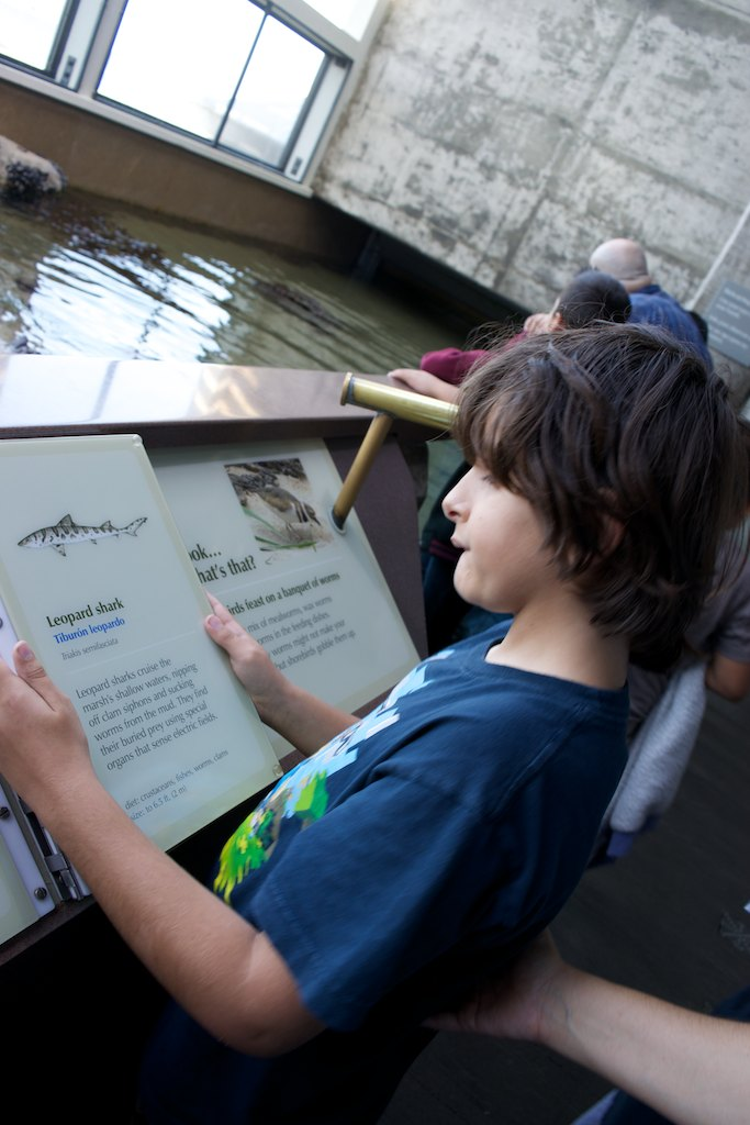 Here Paulo studies the data card of one of the many species of sharks in exhibition