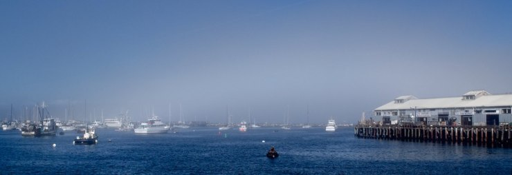 As a new patch of fog rolled into the harbor today, it almost created a rainbow over the surface