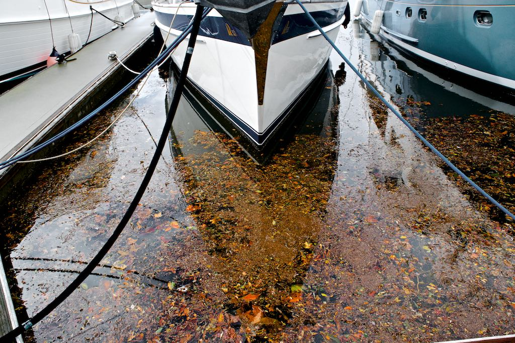 The once-crystal clear waters of the marina were now murky and covered with debris - signals of the flash floods nearby.