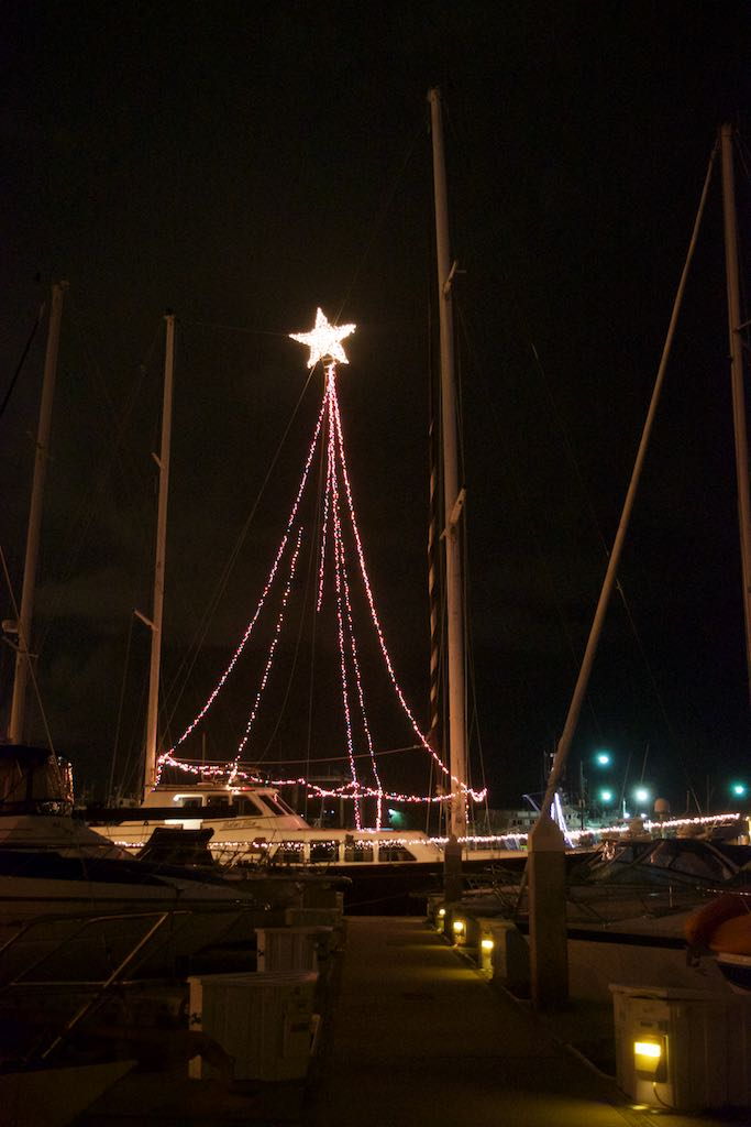 Outside, boats in the marina were beautifully decorated