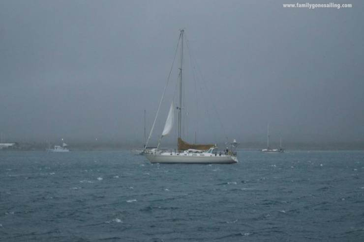 One headsail being blown away from the furling