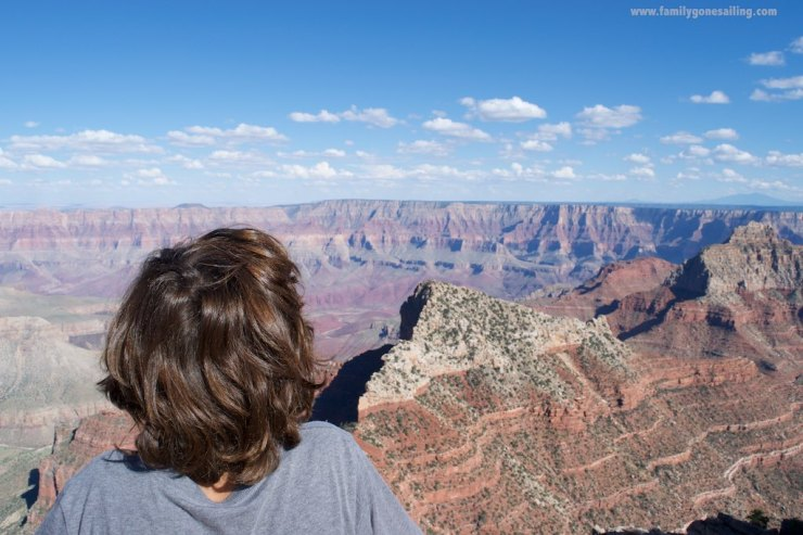 Paulo taking one last view of the Canyon, just before we left.