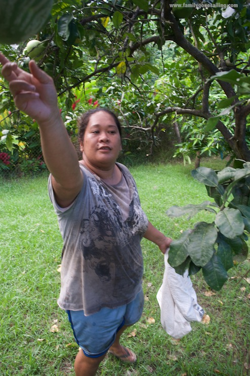 Ku'a, the farm owner, catching fresh fruits for us