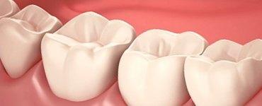 صحة الفم و اللثة