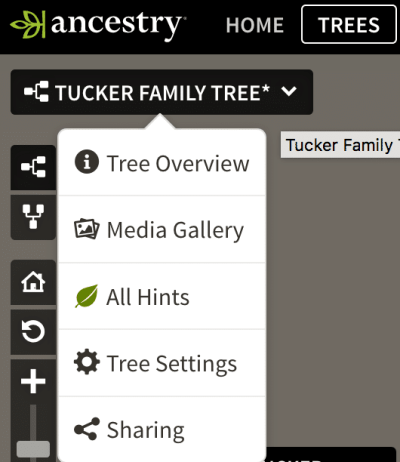 How to move your family tree, GEDCOM, ancestry family tree