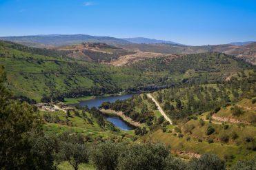 Le Lac Talal