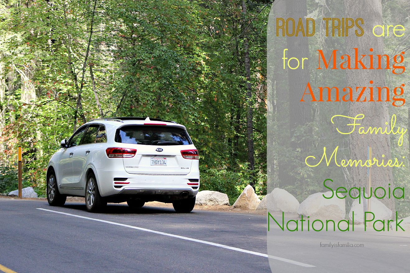road-trips-are-for-making-amazing-family-memories-sequoia-national-park