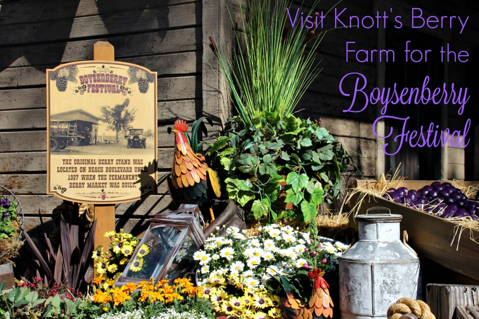 3-top-reasons-to-visit-knotts-berry-farm-for-the-boysenberry-festival
