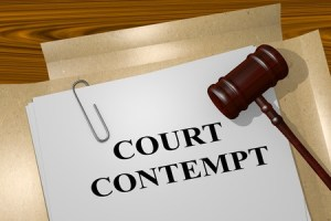 Court's Order