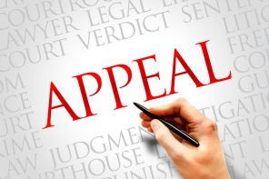Appeals in divorce and family law