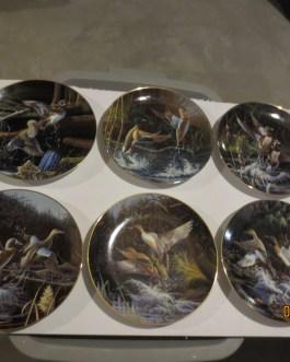 6 piece set Bradford Exchange Michael Budden NA Wildlife Federation Duck plates w coa