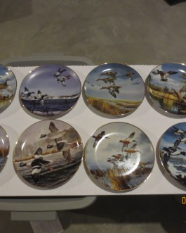 8 piece set Danbury Mint David Maass on Wing collector plates w coa