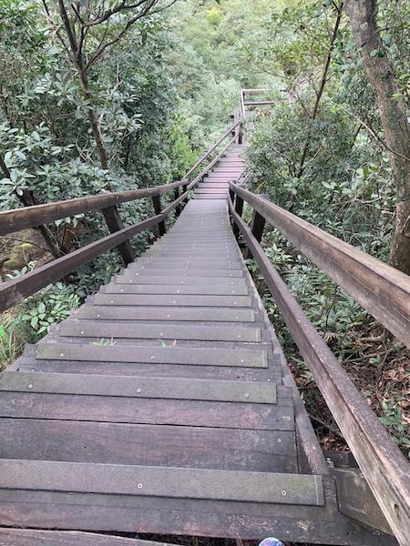 Ngong ping 360 trail