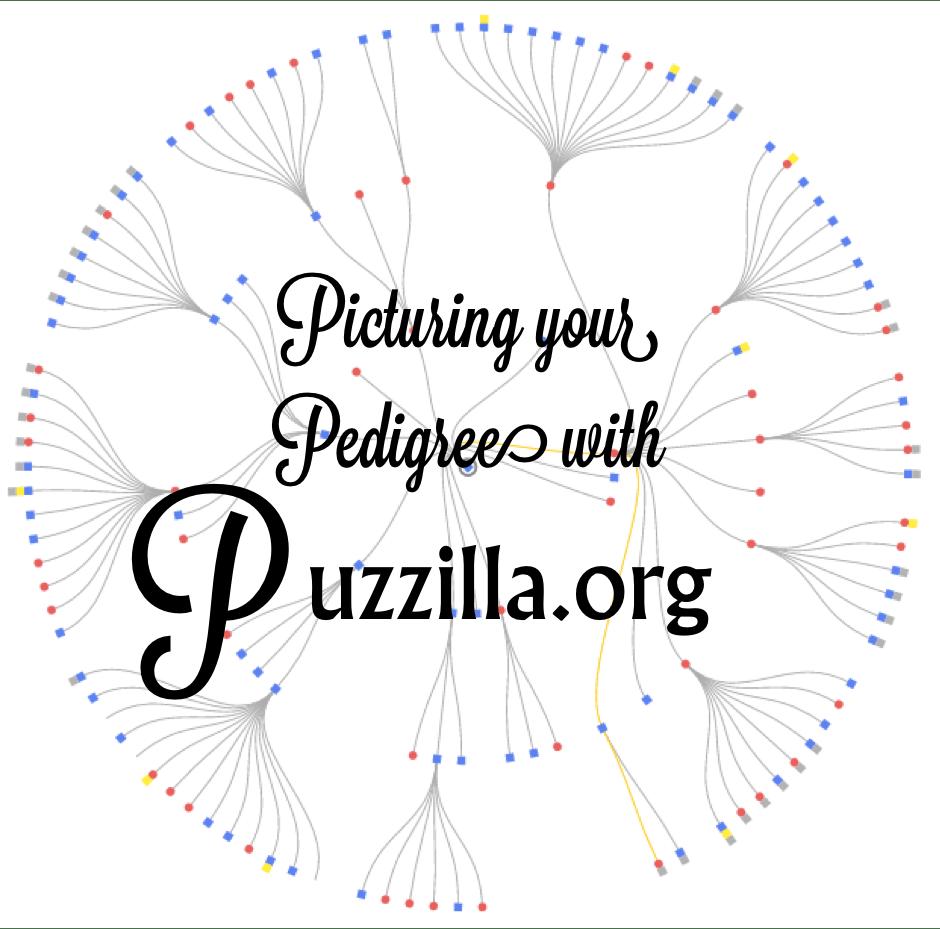 Title puzzilla