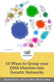 10 Ways to Group your DNA matches into Genetic Networks
