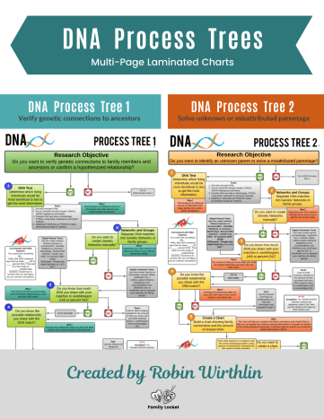 DNA Process Chart RootsTech Poster (1)